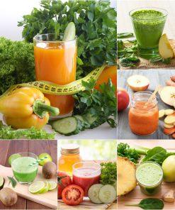 09 เครื่องคั้นน้ำผักผลไม้